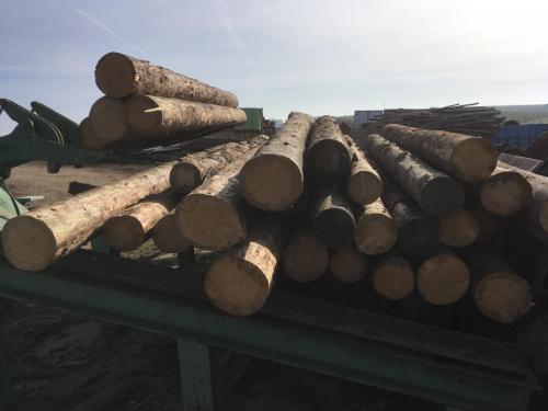 Ein Teil des Rohholzes